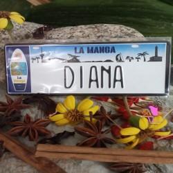 Placa Personalizada Diana