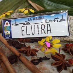 Placa Personalizada Elvira