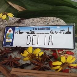 Placa Personalizada Delia
