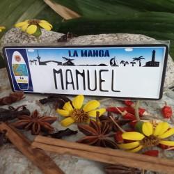 Placa Personalizada Manuel